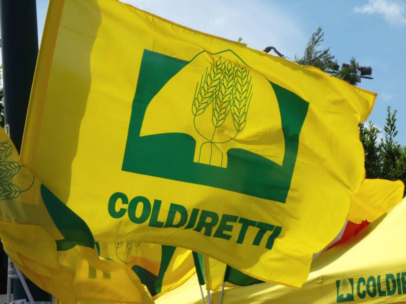 Coldiretti alla Fiera di Codogno con il bilancio dell'annata agraria